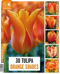 Bilde av Tulipaner Orange Shades - 30 løk