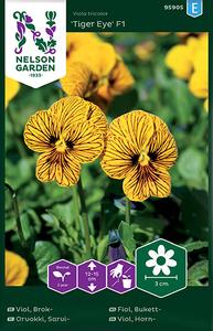 Bilde av Stemorsblomst 'Tiger Eye' - Viola tricolor, Småblomstret