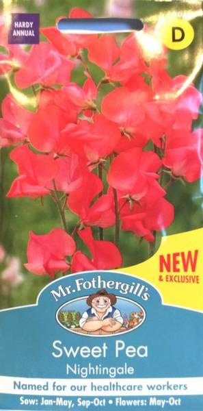 Blomsterert 'Nightingale' - Lathyrus odoratus