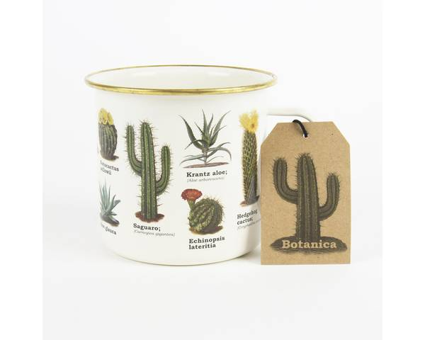 Emaljekopp, sukkulent og kaktus