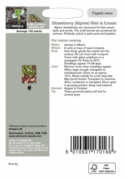 Markjordbær 'Red & Cream' - Fragaria vesca