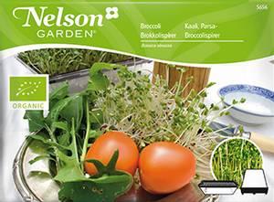 Bilde av Spirer, Brokkoli - Organic