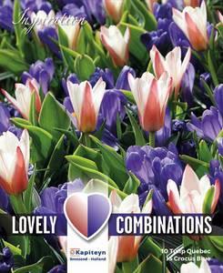 Bilde av Perfect combinations - tulipaner og blå krokus - 25 løk