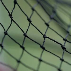 Bilde av HH Nett - Fuglenetting 2 x 10 m
