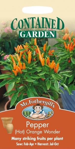Chilipepper 'Orange Wonder' - Capsicum annuum
