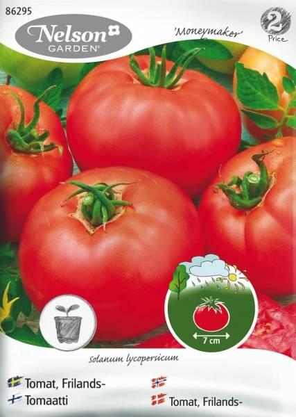 Tomat, Frilands- 'Moneymaker'