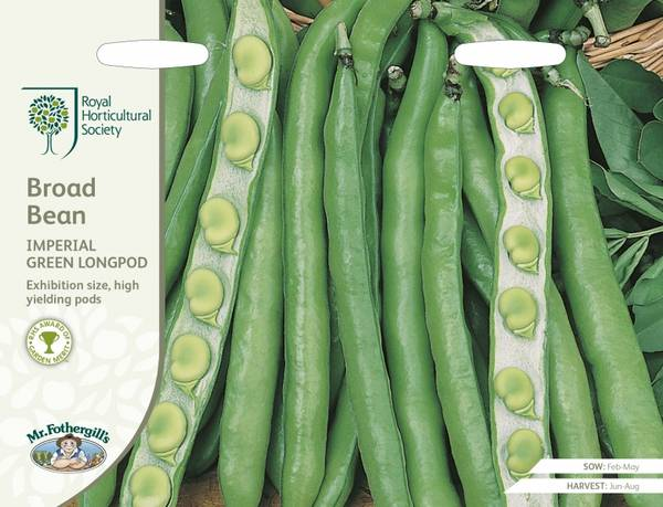 Bønne 'Imperial Green Longpod' - bondebønne