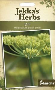 Bilde av Dill, vanlig - Anethum graveolens