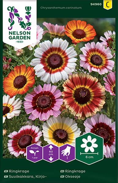 Ringkrage 'Blandede farger' -  Ismelia carinata