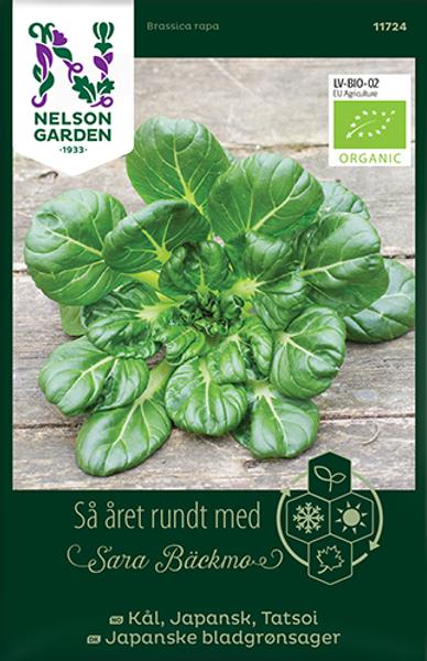 Tatsoi, Japanske bladgrønnsaker - Brassica rapa