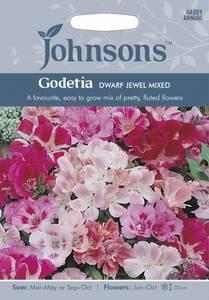 Bilde av Atlasblomst 'Dwarf Jewel Mixed' - Clarkia amoena