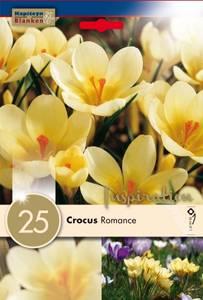Bilde av Begerkrokus 'Romance' - Crocus chrysanthus - 25 stk