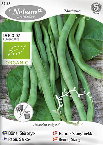 Bønne 'Markant' - Stangbrekkbønne - Organic
