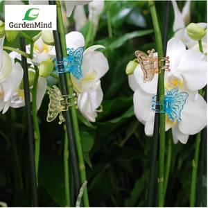 Bilde av Orkidèklemme - sommerfugl 5 stk