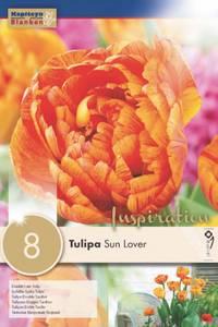 Bilde av Tulipan 'Sun Lover', Sen dobbel - 8 stk