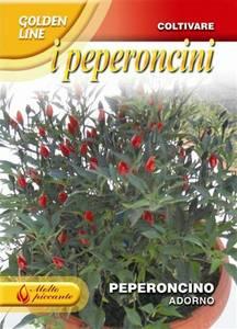 Bilde av Chilipepper 'Adorno' -  Capsicum frutescens
